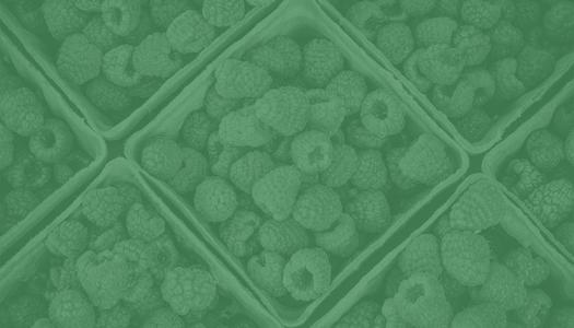 Clustering: Aspectos relevantes y métodos de clustering más utilzados