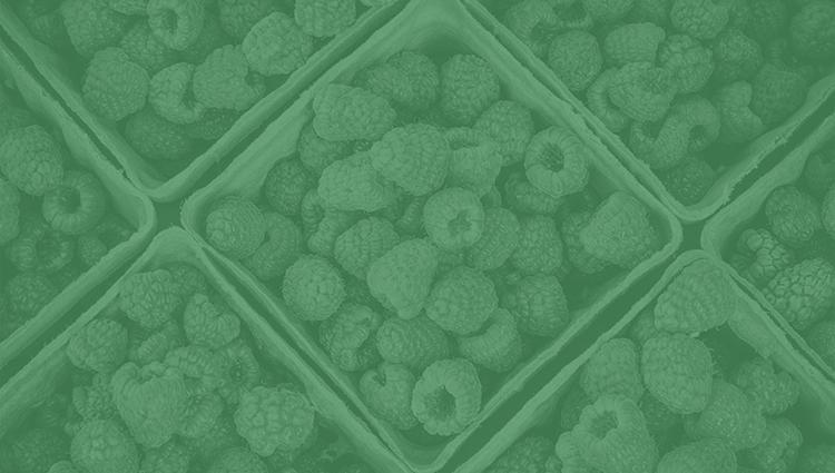 Segmentación y clustering: aspectos más relevantes y métodos más usados